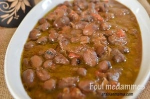 Fava Beans in Slow Cooker (Foul- ful- medames)