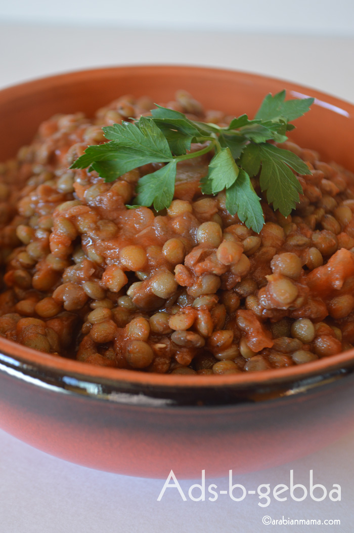 Tired from all the turkey these pas couple of days, here is a recipe that fills hungry tummies without breaking the bank. This recipe along with fool medames and falafel are every day's frugal recipes in Egypt.