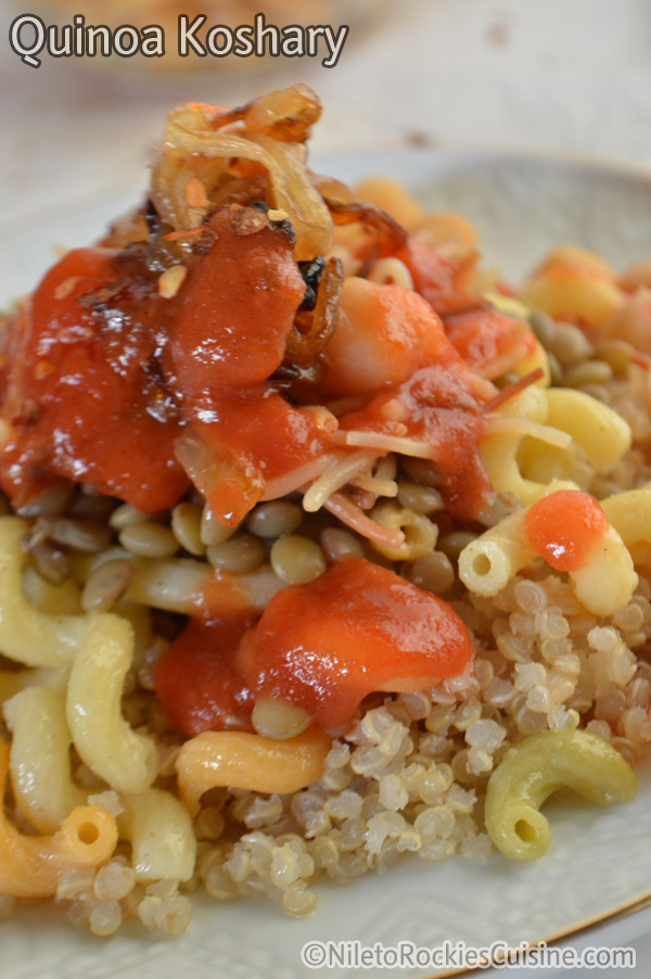A close up of Egyptian Koshari on a plate