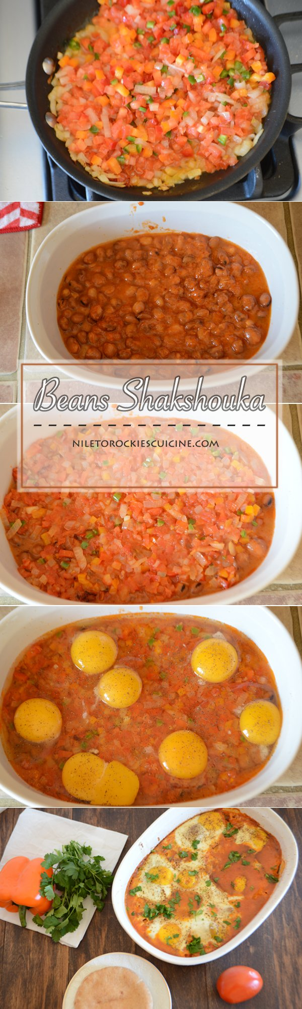 An infograph for Shakshouka recipe