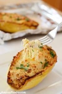 Yum! Cheesy Buffalo Chicken Spaghetti Squash