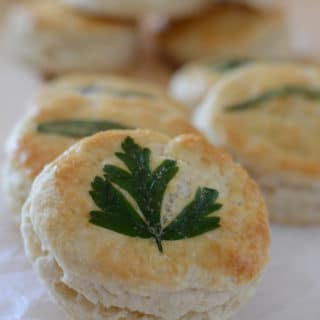 Herb-Laminated Biscuits; homemade Flaky Buttermilk Biscuits