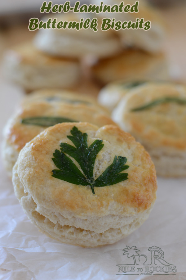 A beautifully looking, flaky, buttery and tender biscuits that will brightenyour table as well as your guests' faces.