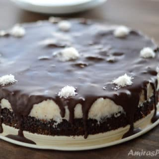 A chocolate bounty cake on a plate, with coconuts