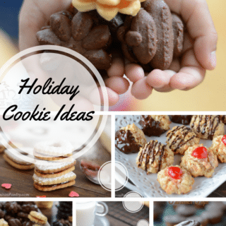 A round up of the best holiday cookie ideas
