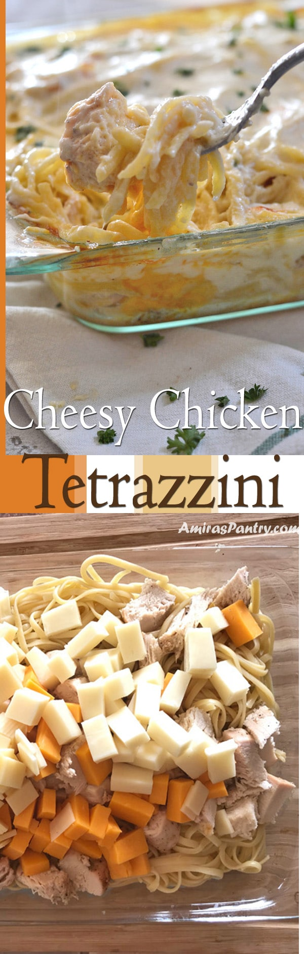 An inforgraph for Chicken Tetrazzini on a plate