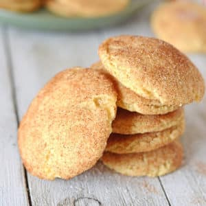 A snickerdoodle cookie sitting on top of a table
