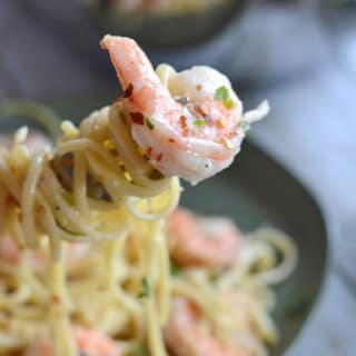 A close up of a bowl of Pasta with sauce, with Shrimp Scampi