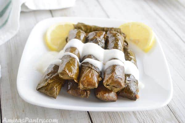 A small white plate with some stuffed grape leaves dressed up with tzatziki sauce.