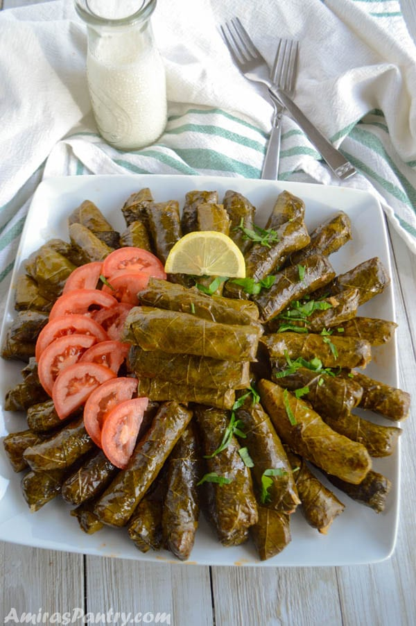 A platter full of stuffed grape leaves garnished with lemon rinds and tomato slices with a small bottle of buttermilk on the side and two forks