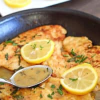 Chicken francese in pan with sauce