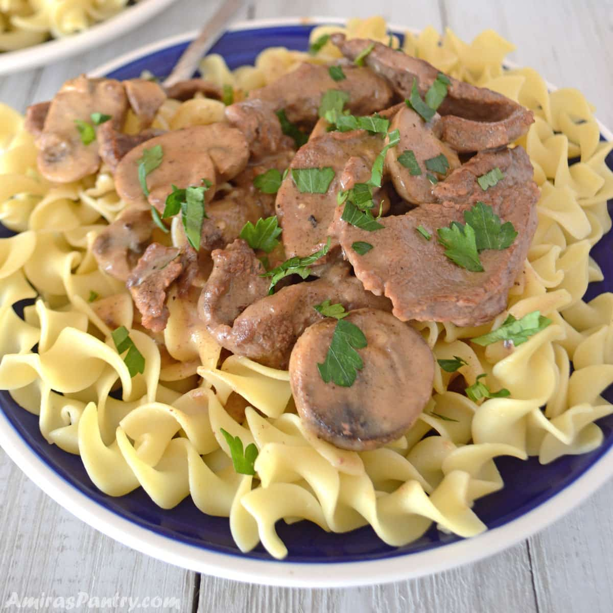 A blur plate filled with beef stroganoff on egg noodles.