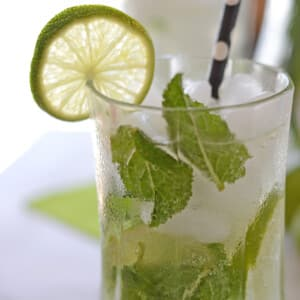 A close up photo of a freshly made Mojito mocktail glass garnished with lime slice and fresh mint leaves.