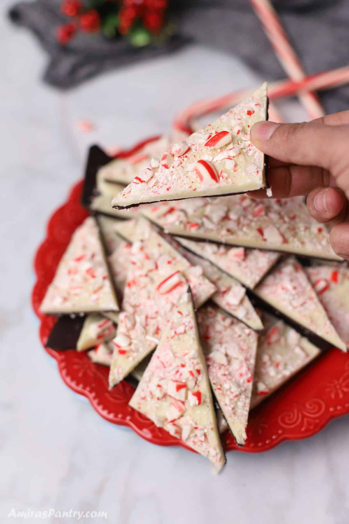 A hand holding a piece of peppermint bark with the rest in a red plate on a white marble table.